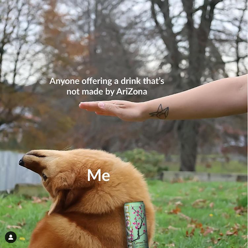 A meme of a dog leaning away from any drinks that aren't AriZona
