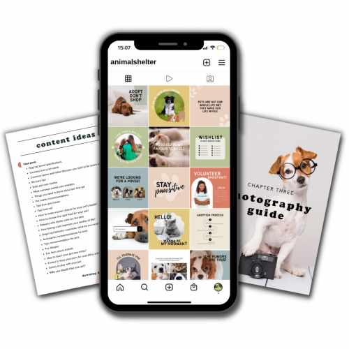 instagram templates for animal shelters (1)